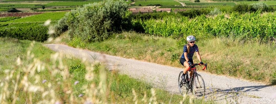 Cycliste au milieu des vignobles du Luberon