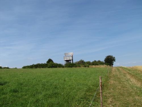 Sauerland-Höhenflug: Von Hallenberg nach Medelon. Wanderung mit Bus und Bahn (DB-Westfalenbus)