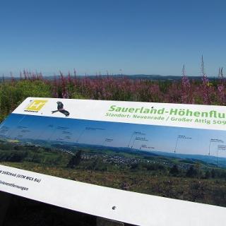 Panoramatafel auf dem Kohlberg
