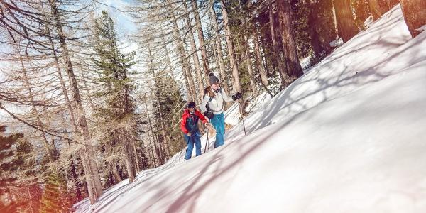 Bodma Winterwanderweg