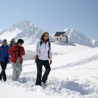 Auf Winterwanderwegen durch die Schneelandschaft