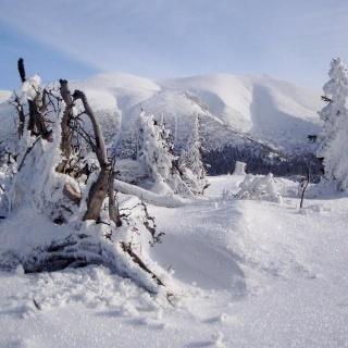 Am Kuhschneeberg, Blick zum Schneeberg