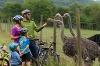 Radfamilie bei Jagsttal-Ranch   - © Quelle: Hohenlohe + Schwäbisch Hall Tourismus e.V.