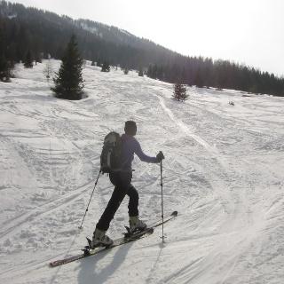 Über die Almwiesen im ehemaligen Skigebiet