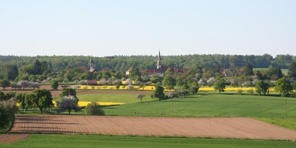 Neckarsteig: Eberbach bis Neunkirchen