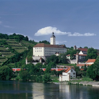 Neckarsteig: Mosbach bis Gundelsheim