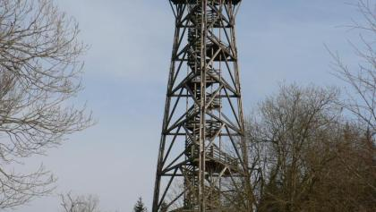 Mit mehr als 30 Metern überragt die Dambergwarte die umliegenden Baumwipfeln