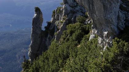 Der Abstieg ist zwar einigermaßen aufregend, aber nicht sehr schwierig.
