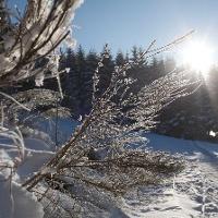 Winterspektakel