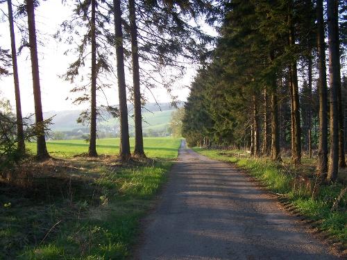 Drolshagen A7 Feld, Wald und Wiesen zum Genießen