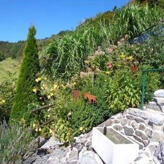 Garten m Sonnenterrasse