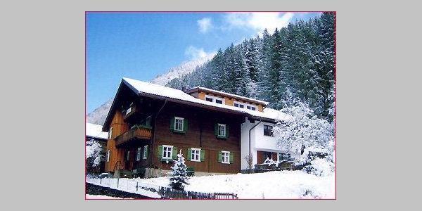 Waldhaus im  Winter