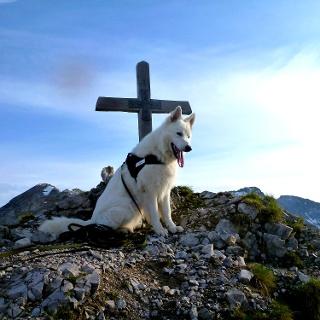 Gipfel Thaurer Joch Spitze