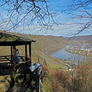 Diese Wanderung lebt von den vielen schönen Ausblicken von der Eifelhöhe in das Moseltal.