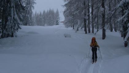 Baumfreie Schneise mit Dümlerhütte im Hintergrund