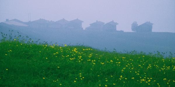 Etappe 17: Medergen im Nebel, Schanfigg