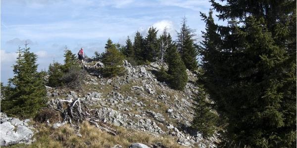 Der selten besuchte Gipfel des Rohnbergs