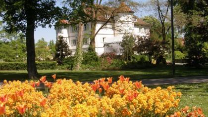 Bad Rappenau Schlosspark - das Bad im Blütenmeer