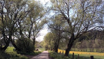 Themenradweg T4