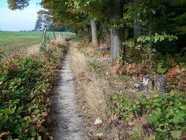 Foto Brückenwaldweg