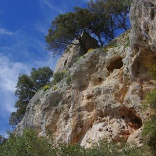 Castell d'Alaro
