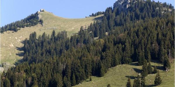 Schon vom Ausgangspunkt der Bergtour zeigen sich die beiden Gipfelziele Wildalpjoch und Käserwand.