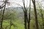 Blick auf das Seltbachhaus der Naturfreunde Bad Urach