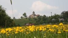 Bühlersteig 1. Etappe - Über den Hohenberg