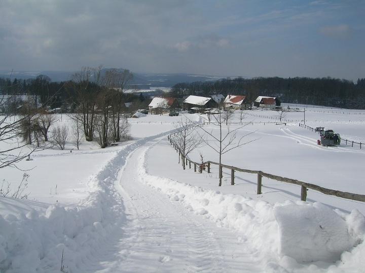 Foto Waitzdorf im Winter