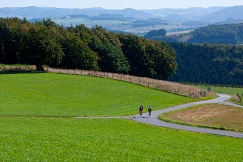 Bike Arena Sauerland - Plettenberger Auf und Nieder