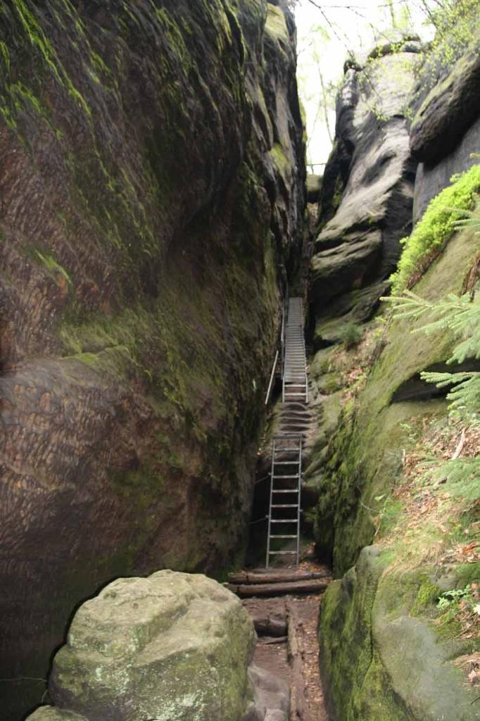 Treppen Wildschützensteig