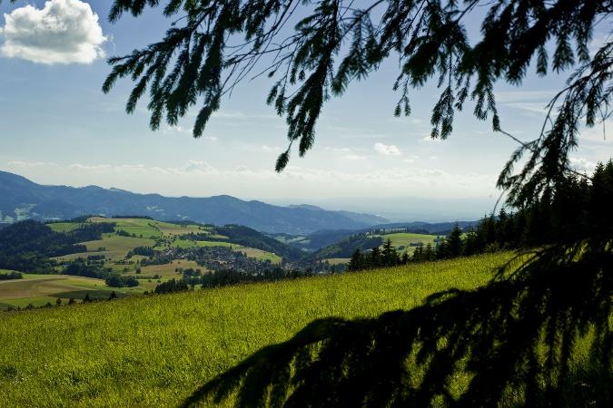 Auf dem Kandelhöhenweg von St. Peter nach Freiburg