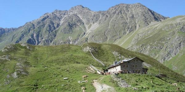 Amberger Hütte2 - Sommer