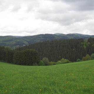 Der Aufstieg nach Adenau