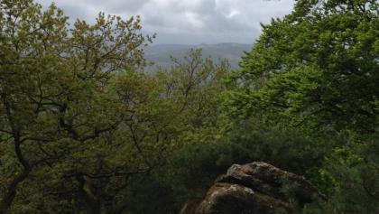 Blick vom Heidenfels