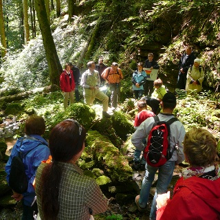 Tour durch die Xanderklinge in Calw-Holzbronn