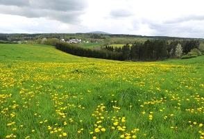 Blick auf Idarkopf(Foto: Tourist-Information Kirchberg, Quelle: Tourist-Information Kirchberg)