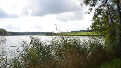 Klosterweiher Roggenburg