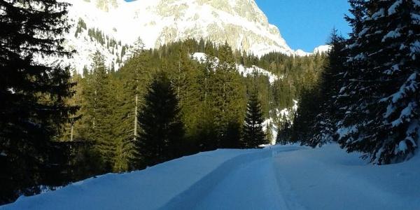 Rodelbahn von der Oberst Klinke Hütte