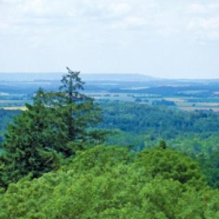 Blick vom Burgbergturm