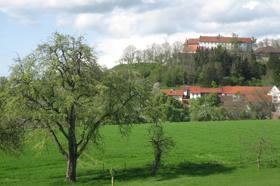 Tannenburg  - @ Autor: Beate Philipp  - © Quelle: Hohenlohe + Schwäbisch Hall Tourismus e.V.