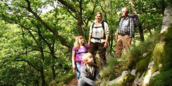 Wandern auf dem Wildnistrail