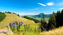 Hörner Panorama Tour - lovely mountain hike from Bolsterlang or Ofterschwang