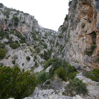 Im Canyon des Torrent Almadrà.