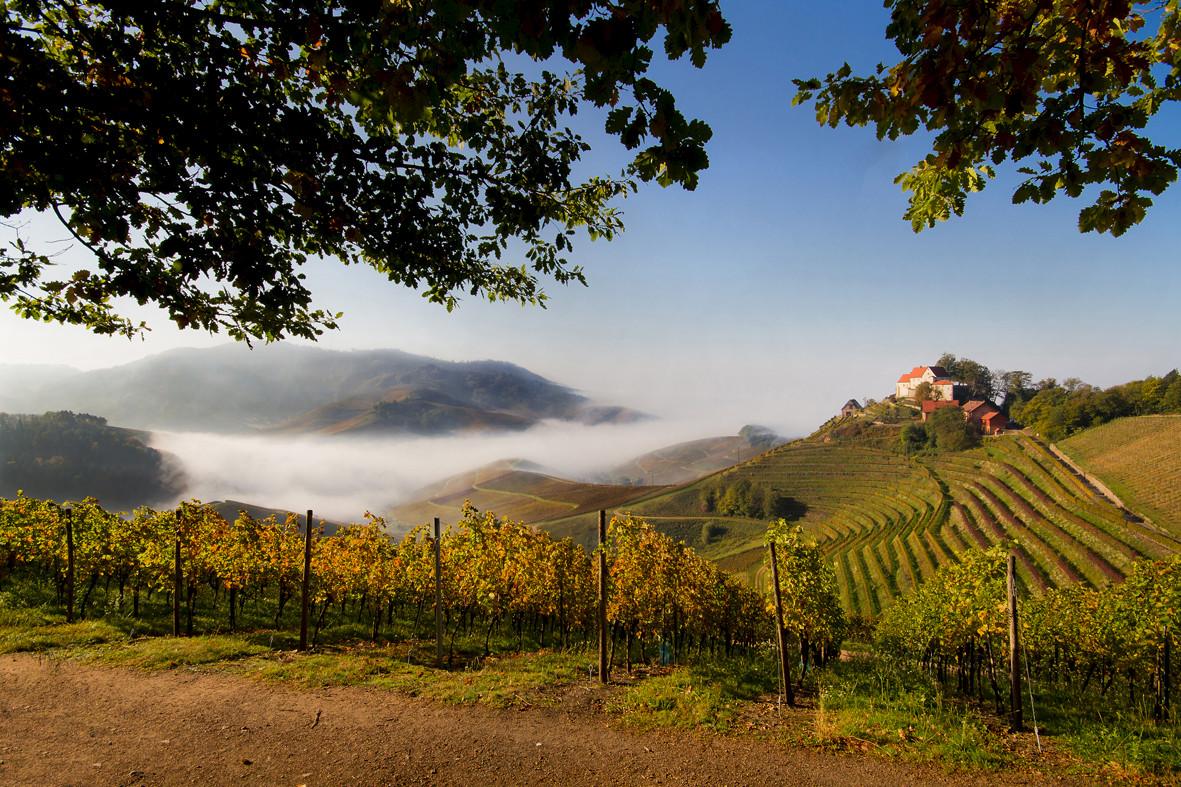 Durbacher Schloss am Durbacher Weinpanorama