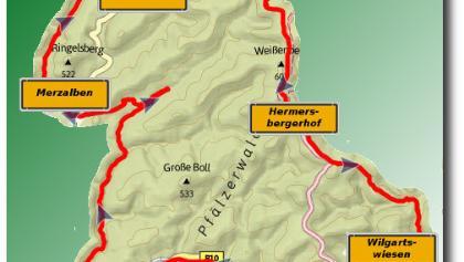 Trailsurfen im Pfälzer Wald (Lv 2.5)