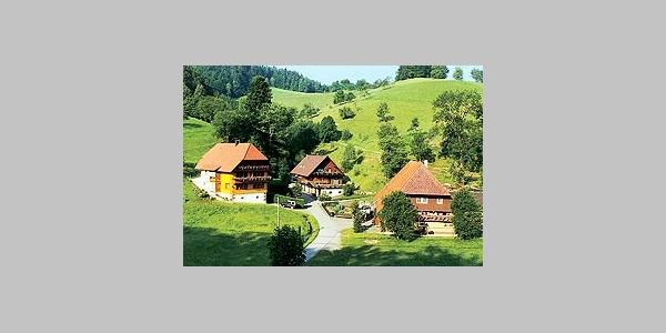 Schwarzwaldferienhof