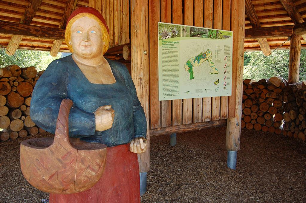 Bernau im Schwarzwald: Start des Zauberwald-Pfads ist der Pavillon hinter dem Loipenhaus: Das Schweinewiibli begrüßt uns