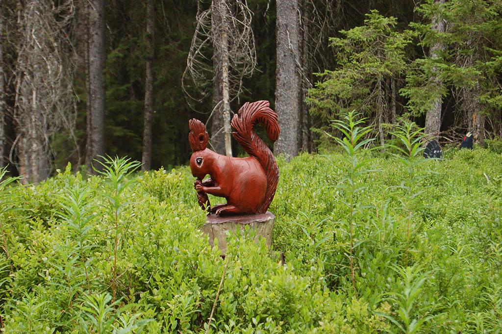 Bernau im Schwarzwald: Auf dem Zauberwald-Pfad sind viele Tiere im Wald versteckt. Wer findet sie?