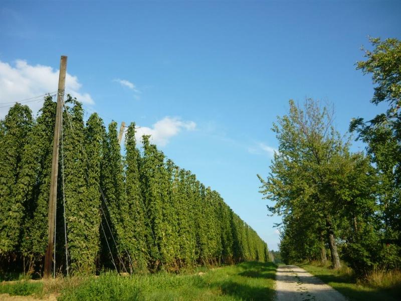 Abens-Radweg